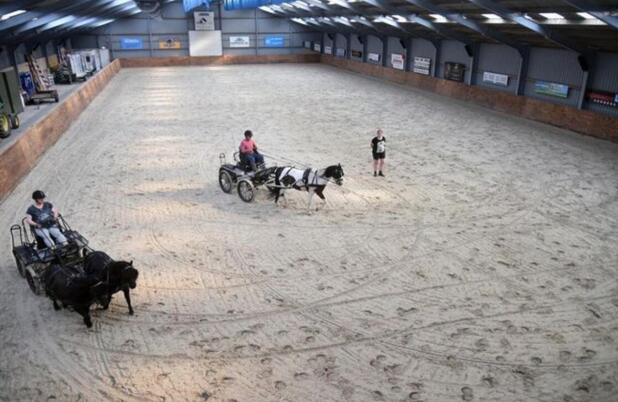 Uit de krant: Paarden glijden in De Caprilli niet meer weg